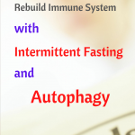 Intermittent fasting can trigger autophagy to bebuild the immune system